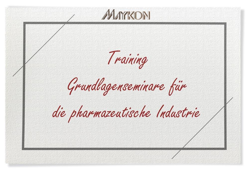 Maykon Training, Grundlagenseminare für Pharma Industrie